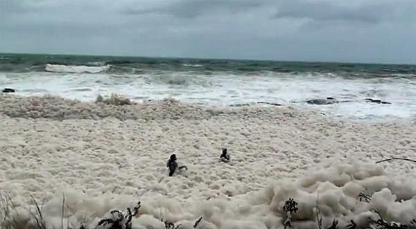 Naturaleza transforma el Mar en Espuma = «Foam Day» o «Día de Espuma»