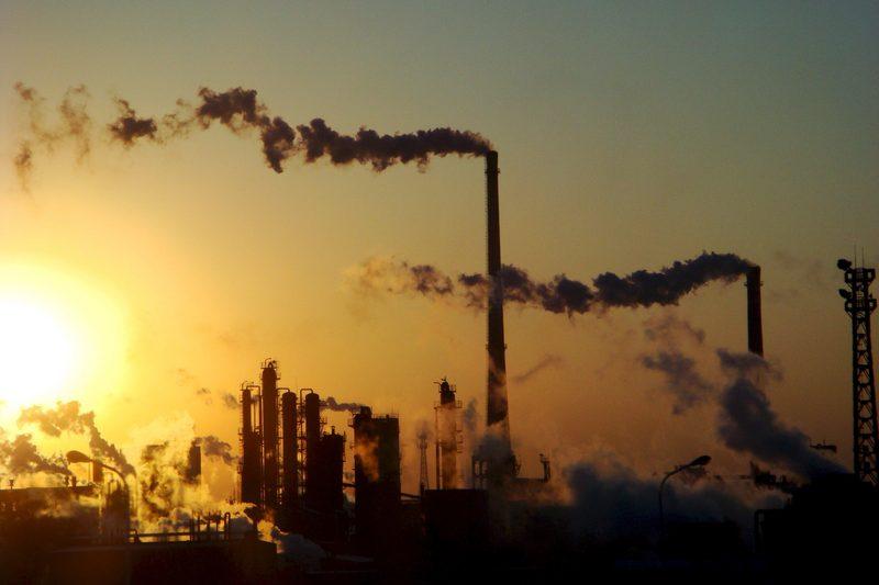 Políticas medioambientales en peligro de extinción.