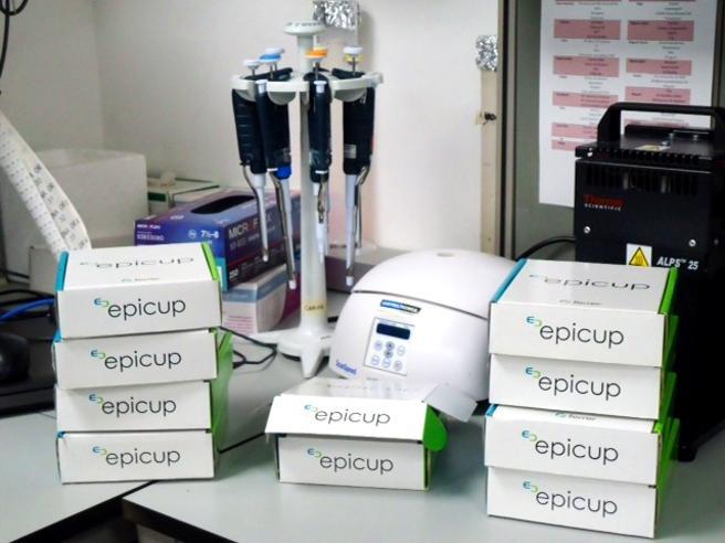 """Test Epigenético """"Epicup"""", permite  detectar 87% de los Cánceres de Origen Desconocido"""