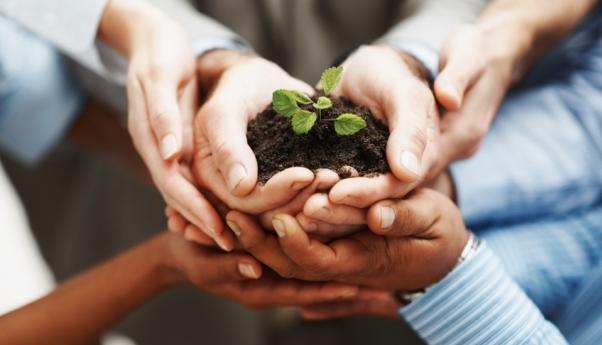 Economía social: otro modelo de emprendimiento