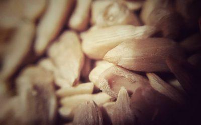 ¿Por qué deberías consumir semillas de girasol?