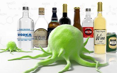 ¿Beber una copa de vino al día? Estudios revelan que alcohol puede ocasionar daño del ADN y ocasionar 7 tipos de Cáncer