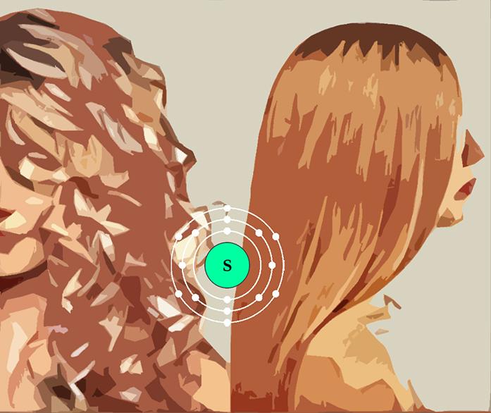 ilustración de pelo lacio y pelo rizado