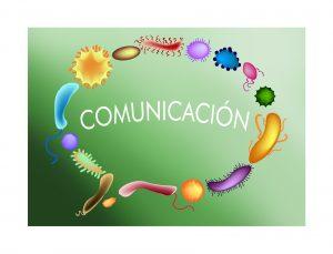 Las bacterias se unen para formar un bocadillo de diálogo en el que pone comunicación