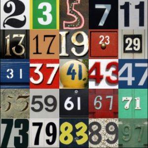 Números Primos: Enigmas y Aplicaciones
