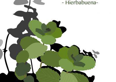 17_Ejercicio_10_Ilust_Botanica_Hierbabuena_01_FINAL_entrega