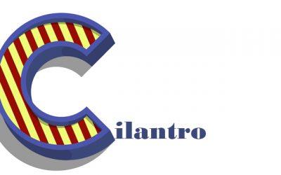 Cilantro