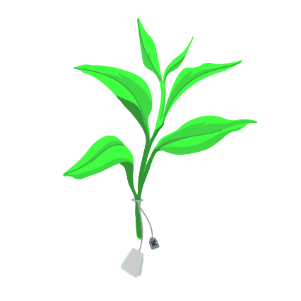 Ilustración de rama de té con una bolsita de infusión alrededor