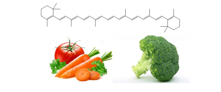 β-caroteno: Biosíntesis y Actividad Biológica
